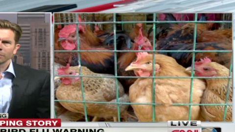 watson.china.bird.flu_00031210.jpg