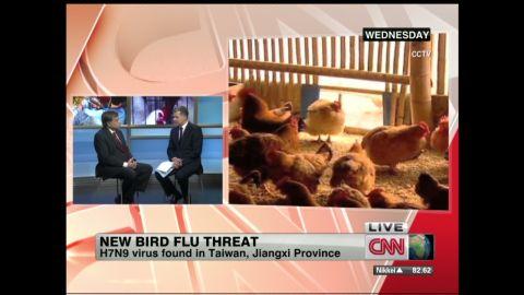 nr.new.bird.flu.threat_00024014.jpg