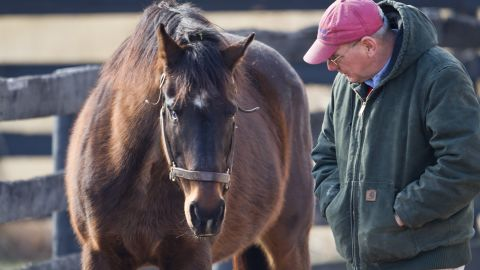 """Clever Allemont and <a href=""""http://www.oldfriendsequine.org/"""" target=""""_blank"""" target=""""_blank"""">Old Friends</a> Retirement Center founder Michael Blowen spent quality time together in the paddock as the elderly racehorse lived out his golden years. """"Because people cared about Clever Allemont, he is with us,"""" Blowen said in 2013 of the horse rescued from a kill auction. """"Aller"""" was blind in one eye."""