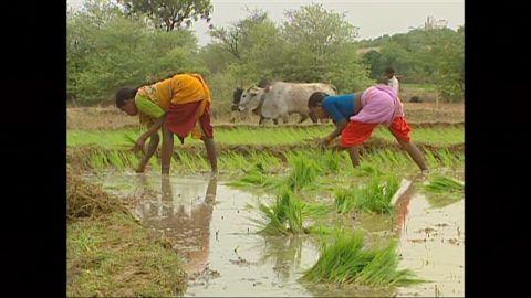 udas lklv india climate change _00002816.jpg