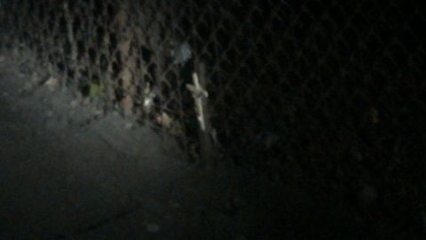 A small cross sits in Ariel Castro's backyard in this exclusive image from neighbor Verdi Adams.