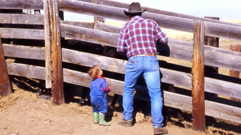 """To this day, blue jeans remain the uniform for cowboys young and old. Here, Bruce Beasley and his grandson <a href=""""http://ireport.cnn.com/docs/DOC-971568"""">load cattle on their farm</a> in Patricia, Alberta, in May 2013."""