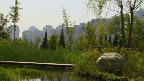 pkg watson china urbanization_00001712.jpg