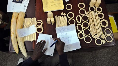 In the documentary the directors were able to reveal the destination of a large amount of African ivory. Pictured: a police officer documents illegal ornaments and tusks found in the possession of Chinese nationals in Nairobi, Kenya, in January 2013.