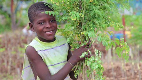 going green haiti community garden_00021318.jpg