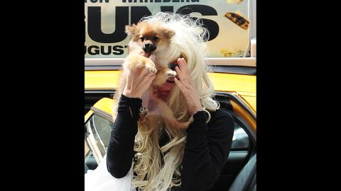 """Bynes uses her dog to block her face from photographers while shopping in Chelsea on July 10, 2013, in New York City. On July 24 of that year, Bynes was detained for a mental health evaluation after being """"involved in a disturbance in a residential neighborhood"""" in  Thousand Oaks, California. She was then placed under an involuntary psychiatric hold for four months."""