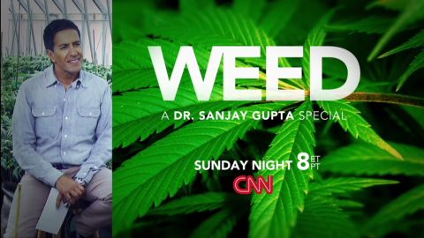 Gupta Weed Promo_00002830.jpg