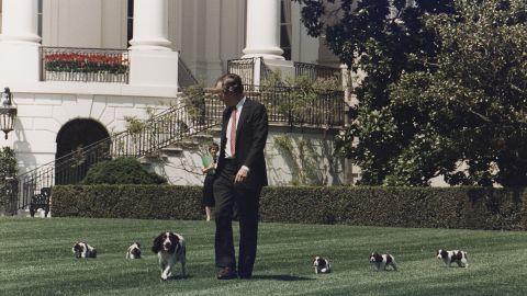 George H.W. Bush walks on the South Lawn of the White House with his springer spaniel Millie and her puppies in 1989.