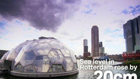 the city rotterdam future mayor floating houses_00004221.jpg