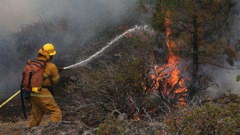 A firefighter douses a spot fire, as he battles the Rim Fire near Yosemite National Park in California.