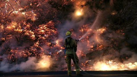 A firefighter douses flames of the Rim Fire in Groveland, near Yosemite National Park, on Saturday, August 24.
