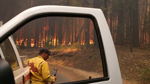 A Cal Fire firefighter monitors the Rim Fire as it burns through a stand of trees near Groveland on August 25.