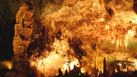 Some 230 meters beneath a stand of cactus-studded rocky slopes in New Mexico lies a wonderland of 117 caves formed when sulfuric acid dissolved the surrounding limestone.