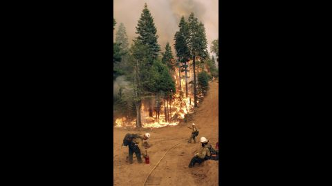 BLM Silver State Hotshot crew members perform burn operations on the southern flank of the fire on August 30.