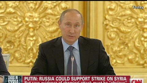 tsr dnt Putin might support strike on Syria based on clear proof_00000417.jpg