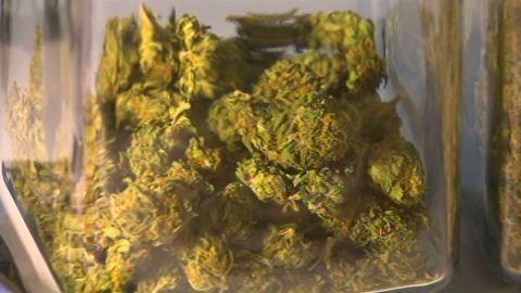 dnt wa marijuana sales rules_00000626.jpg