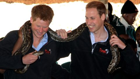 Prince Harry, left, and Prince William hold an African rock python during a visit to Mokolodi Education Centre  in Gaborone, Botswana on June 15, 2010.