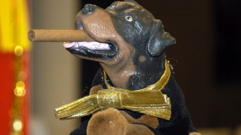 Created by head writer Robert Smigel, Triumph the Insult Comic Dog took on a life of his own following his first appearance in 1997. He became one of Conan's most memorable recurring character.