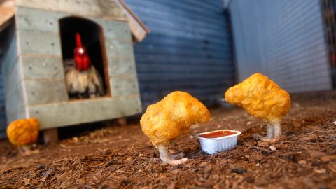 """A scene titled """"Chicken Nuggets,"""" from Banksy's """"The Village Pet Store and Charcoal Grill,"""" is seen in New York in 2008."""