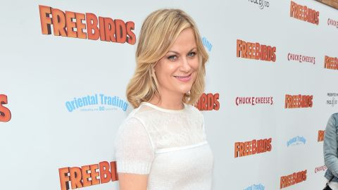 """Amy Poehler arrives at the premiere of Relativity Media's """"Free Birds"""" at the Westwood Village Theatre on October 13, 2013 in Hollywood, California."""
