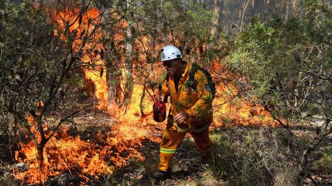 """A firefighter lights a back burn Monday, October 21 near Mount Victoria in the Blue Mountains. There are fears that the dozens of fires could become one possible """"megafire."""""""