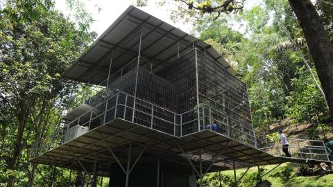 A socialization cage gets inspected at the Sumatran Orangutan Conservation Programme in April before some Sumatran orangutans are reintroduced into forests.