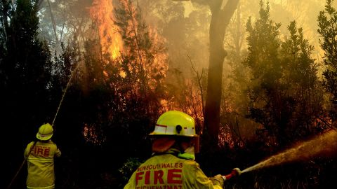 Firefighters battle the fire front as it moves toward homes in Lake Macquarie, Australia, on Wednesday, October 23.