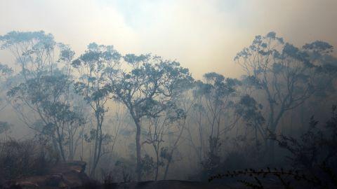 Thick smoke fills the sky near Faulconbridge on October 24.