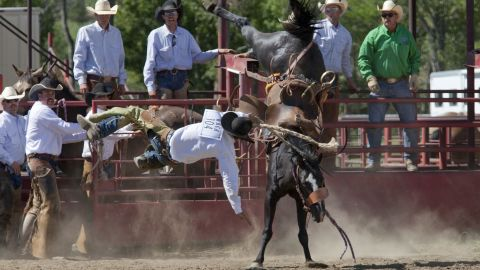 """One of the ways to ensure you can get back on a horse is to know how to fall off one. Avoid the instinct to break the fall with a stiff arm. Instead, you should """"relax your muscles and roll off the side of the horse,"""" the book says."""
