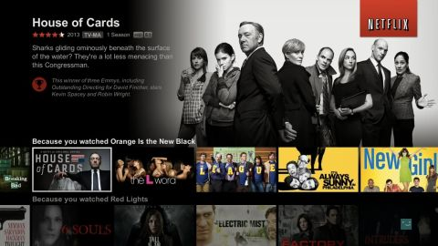 """<strong>Winner: Netflix </strong>-<strong> </strong>That little service with the red DVD envelopes is all grown up. After emphasizing the streaming portion of its business, Netflix got into the original programming market and hit on all cylinders, topped by """"House of Cards"""" and its nine Emmy nominations. Get ready for more."""