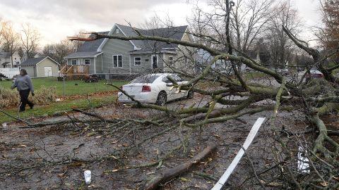 A fallen tree blocks traffic on November 17 in Marion, Indiana.