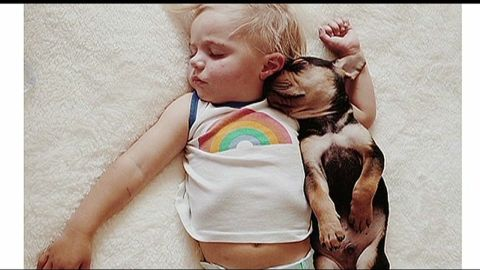 ca dnt boy and his pup nap together _00001628.jpg