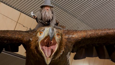 """Wellington International Airport's new installation features two realistic """"great eagles"""" from """"The Hobbit: The Desolation of Smaug."""" The sculptures were created by Wellington's Weta Workshop -- the same team that built props and designed physical effects for """"The Hobbit"""" and """"The Lord of the Rings"""" trilogies."""