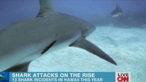 exp newday sambolin hawaii shark attack_00015201.jpg