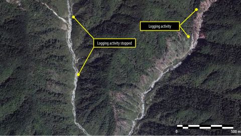 An image from September 2013 shows that logging activities have been ongoing over a two year period.