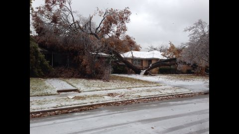 """A tree, split in two, lays on two homes on December 6 in Dallas in this photograph taken by CNN iReporter <a href=""""http://ireport.cnn.com/docs/DOC-1066368"""">Earl Wallace IV</a>."""