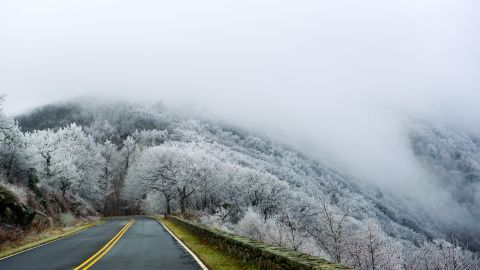 Moisture from low-lying clouds coats trees in Virginia's Shenandoah National Park with a layer of ice and frost on December 7.