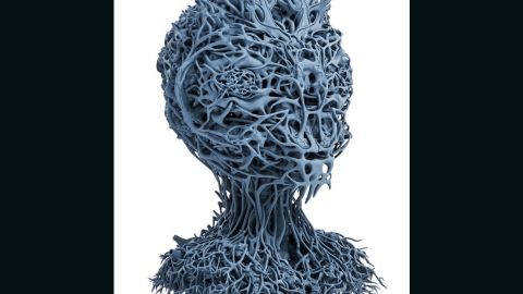 """Belgian artist <a href=""""http://www.nickervinck.com/"""" target=""""_blank"""" target=""""_blank"""">Nick Ervnck</a> drew inspiration from imagery of human organs found in medical manuals when designing this creepy bust called AGRIEBORZ. He drew the design, which invokes nerves and blood vessels, manually on the computer. It took more than 800 sketches to achieve this sci-fi result."""