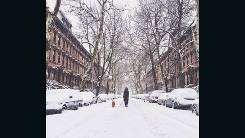"""Spending a quiet moment out in the snow, <a href=""""http://ireport.cnn.com/docs/DOC-1072196"""">Tamara Peterson</a> photographed a neighbor walking her dog in the Fort Greene neighborhood of New York City."""