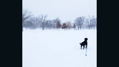 """Winter weather brought on a whiteout on January 2 in Chicago's Humboldt Park neighborhood, said<a href=""""http://ireport.cnn.com/docs/DOC-1072304""""> Ivan Vega</a>. He went out for a walk in the 20-degree weather with his dog, Sergeant Thomas."""