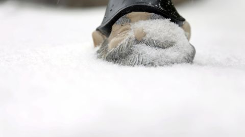 Snow covers a garden gnome in St. Louis on January 5.