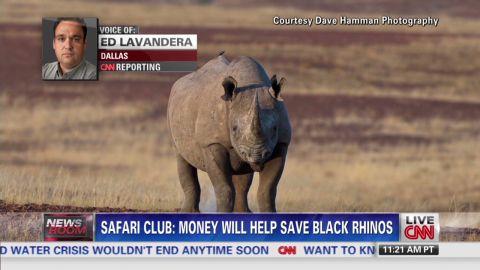 exp lavandera black rhino_00010017.jpg