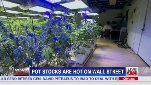 exp pot stocks wall street_00004629.jpg
