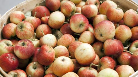 """<strong>Apples</strong><br /><br />Apples are one of the few fruits that contain pectin, which naturally slows digestion and promotes a feeling of fullness, according to a study in Gastroenterology. In fact, people who ate an apple as part of a meal felt more satiated and ate less than those who consumed a calorically equivalent amount of juice and applesauce. <br /><br />""""Whole apples take a long time to eat for very few calories,"""" says Susan Roberts, professor of nutrition at Tufts University. Your body has more time to tell your brain that you're no longer hungry. That means you can eat lots of this low-energy-density, high-satiety fruit and avoid feeling deprived while losing weight, adds Roberts.<br /><br /><strong>Feel even fuller:</strong> Add apple chunks to oatmeal or salad, or slices to a turkey-on-whole-wheat sandwich.<br /><br /><a href=""""http://www.health.com/health/gallery/0,,20629049,00.html"""" target=""""_blank"""" target=""""_blank"""">Health.com: 25 amazing apple recipes</a>"""