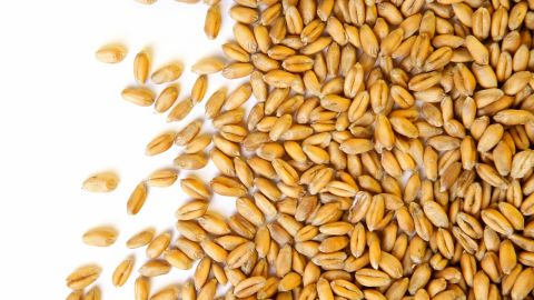 """<strong>Wheat berries</strong><br /><br />Move over, quinoa. Wheat berries, which are whole-wheat kernels, contain one of the highest amounts of protein and fiber per serving of any grain -- 6 grams of protein and 6 grams of fiber. """"Protein triggers the hormone ghrelin to tell our brain that we are satisfied,"""" Roberts explains, """"and fiber activates appetite-suppressing gut hormones.""""<br /><br /><strong>Feel even fuller:</strong> Do what celeb chef Ellie Krieger does: Toss wheat berries with apples, nuts and other diet-friendly foods to make a super tasty salad.<br /><br /><a href=""""http://www.health.com/health/gallery/0,,20486997,00.html"""" target=""""_blank"""" target=""""_blank"""">Health.com: How berries prevent aging</a>"""