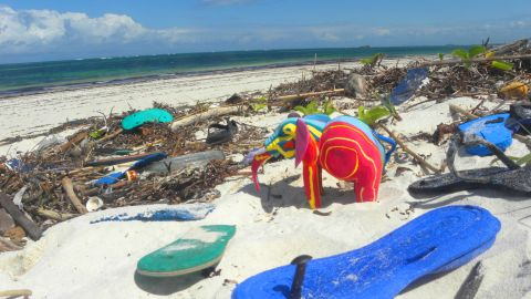 """Instead of invading Kenya's white sandy beaches with tonnes of plastic waste washed up on shore, <a href=""""http://edition.cnn.com/2014/02/05/world/africa/where-do-flip-flops-break-ocean-sole/index.html"""" target=""""_blank"""">Nairobi-based Ocean Sole</a> is a recycling company turning broken flip-flops into whimsical art sculptures. The company sells its fantastical creations to zoos, stores and aquariums across the globe."""