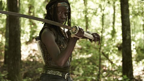 """We didn't even see her face but when she used her katana to slice through zombies at the end of season two, we knew we really liked Michonne, actress Danai Gurira, from """"The Walking Dead"""" right away."""