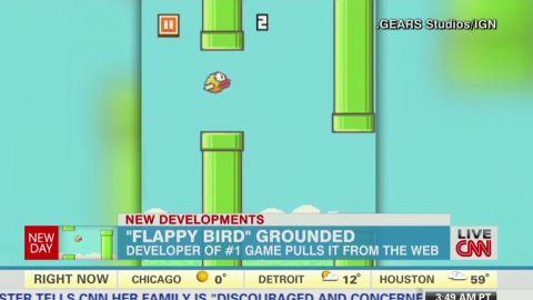 newday Larson Flappy bird app pulled from web_00000621.jpg