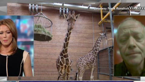 nr Danish Zoo defends giraffe killing_00014907.jpg
