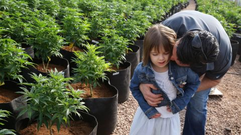"""More than 100 families have moved to Colorado to access """"Charlotte's Web,"""" a cannabis strain that in some <a href=""""http://www.cnn.com/2013/08/07/health/charlotte-child-medical-marijuana/"""">epileptic children seems to dramatically reduce seizures</a>. Taken as an oil, the medicine is high in a chemical called CBD and low in THC, the component that makes people """"high."""""""